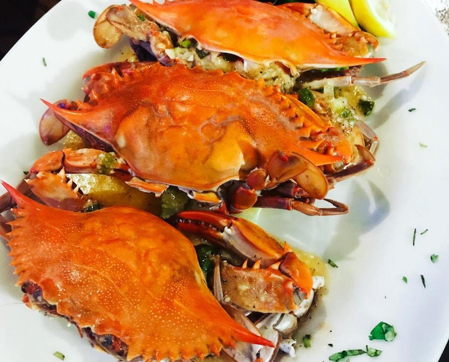 king-crab-house-chicago-blue-oysters